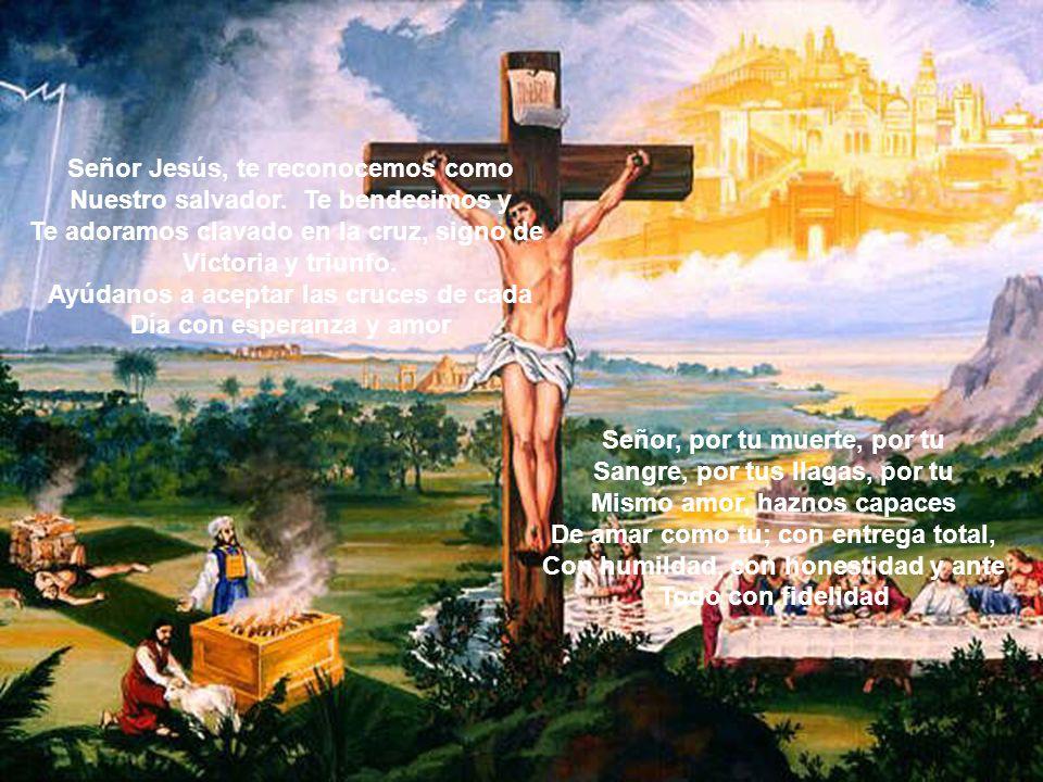 Señor Jesús, te reconocemos como Nuestro salvador. Te bendecimos y Te adoramos clavado en la cruz, signo de Victoria y triunfo. Ayúdanos a aceptar las