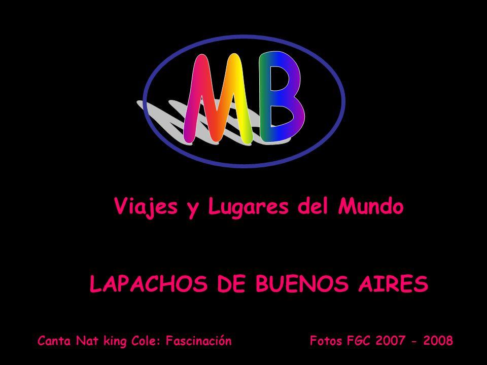 AUTOMATICO Canta Nat king Cole: Fascinación Fotos FGC 2007 - 2008 Viajes y Lugares del Mundo LAPACHOS DE BUENOS AIRES