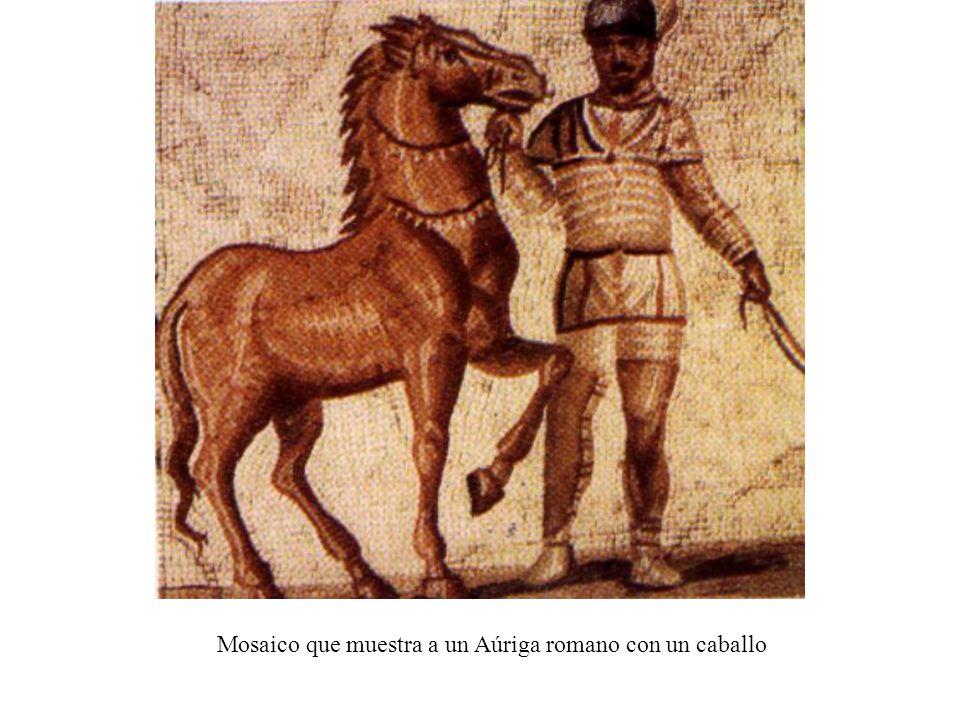 Mosaico que muestra a un Aúriga romano con un caballo