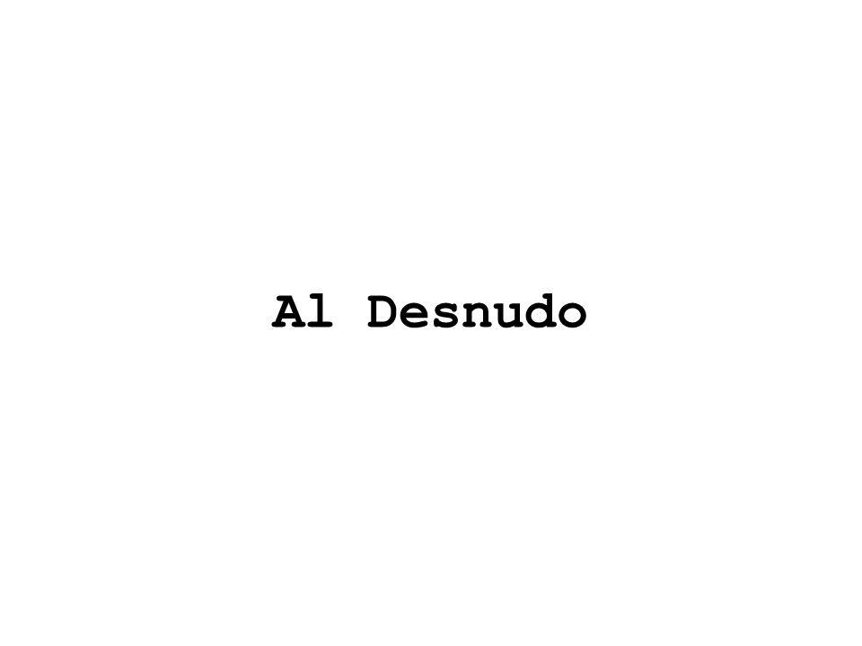 Al Desnudo
