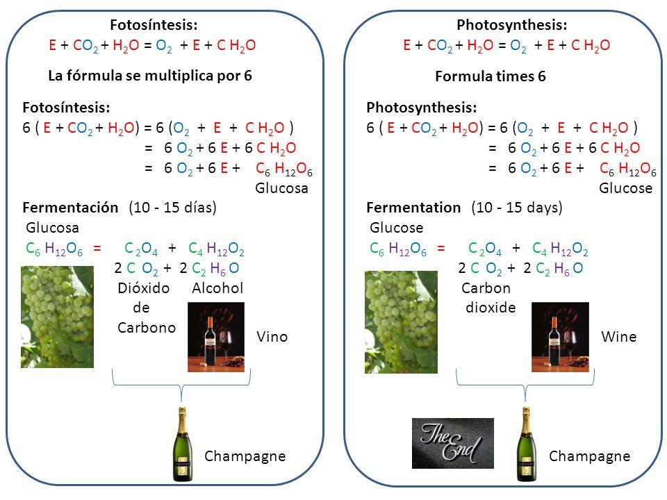 Fotosíntesis: E + CO 2 + H 2 O = O 2 + E + C H 2 O La fórmula se multiplica por 6 Fotosíntesis: 6 ( E + CO 2 + H 2 O) = 6 (O 2 + E + C H 2 O ) = 6 O 2 + 6 E + 6 C H 2 O = 6 O 2 + 6 E + C 6 H 12 O 6 Glucosa Fermentación (10 - 15 días) Glucosa C 6 H 12 O 6 = C 2 O 4 + C 4 H 12 O 2 2 C O 2 + 2 C 2 H 6 O Dióxido Alcohol de Carbono Vino Champagne Formula times 6 Photosynthesis: 6 ( E + CO 2 + H 2 O) = 6 (O 2 + E + C H 2 O ) = 6 O 2 + 6 E + 6 C H 2 O = 6 O 2 + 6 E + C 6 H 12 O 6 Glucose Fermentation (10 - 15 days) Glucose C 6 H 12 O 6 = C 2 O 4 + C 4 H 12 O 2 2 C O 2 + 2 C 2 H 6 O Carbon dioxide Wine Champagne Photosynthesis: E + CO 2 + H 2 O = O 2 + E + C H 2 O