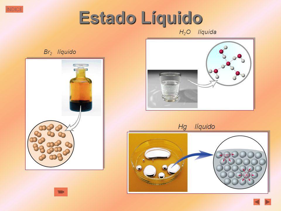 ÍNDICE Estado Líquido En los líquidos las partículas constituyentes están en contacto unas con otras. De ahí que los líquidos posean volumen constante
