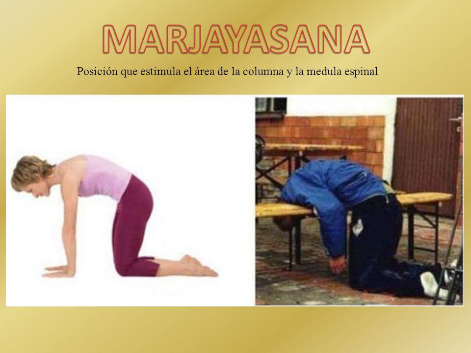Posición que estimula el área de la columna y la medula espinal