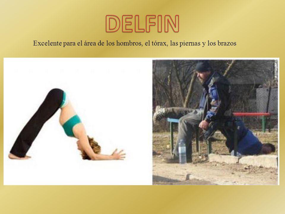 Ideal para estimular la región lumbar, las piernas y los brazos