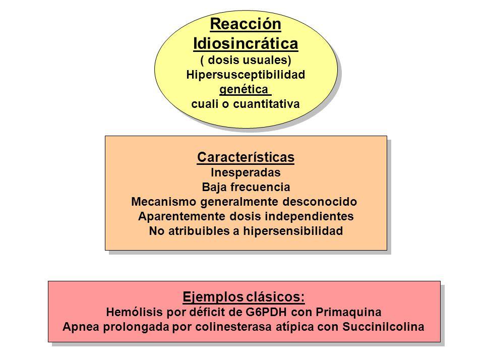 Reacción Idiosincrática ( dosis usuales) Hipersusceptibilidad genética cuali o cuantitativa Reacción Idiosincrática ( dosis usuales) Hipersusceptibili