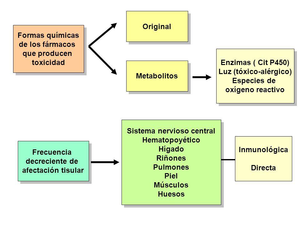 Formas químicas de los fármacos que producen toxicidad Formas químicas de los fármacos que producen toxicidad Original Metabolitos Enzimas ( Cit P450)