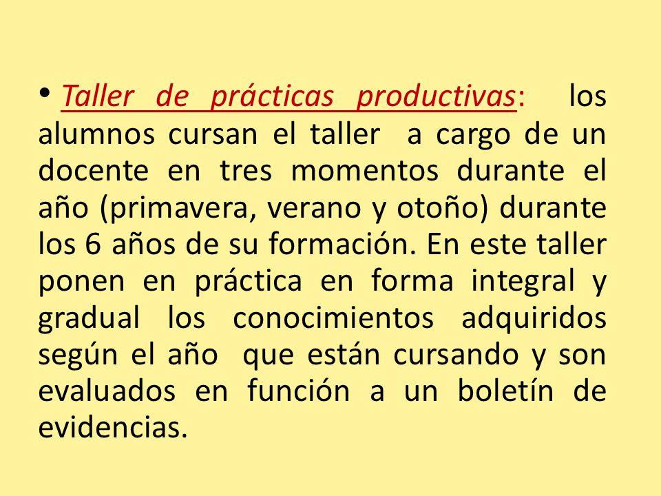 Taller de prácticas productivas: los alumnos cursan el taller a cargo de un docente en tres momentos durante el año (primavera, verano y otoño) durant