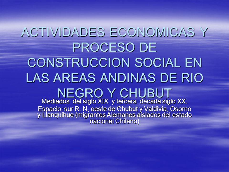 ACTIVIDADES ECONOMICAS Y PROCESO DE CONSTRUCCION SOCIAL EN LAS AREAS ANDINAS DE RIO NEGRO Y CHUBUT Mediados del siglo XIX y tercera década siglo XX. E
