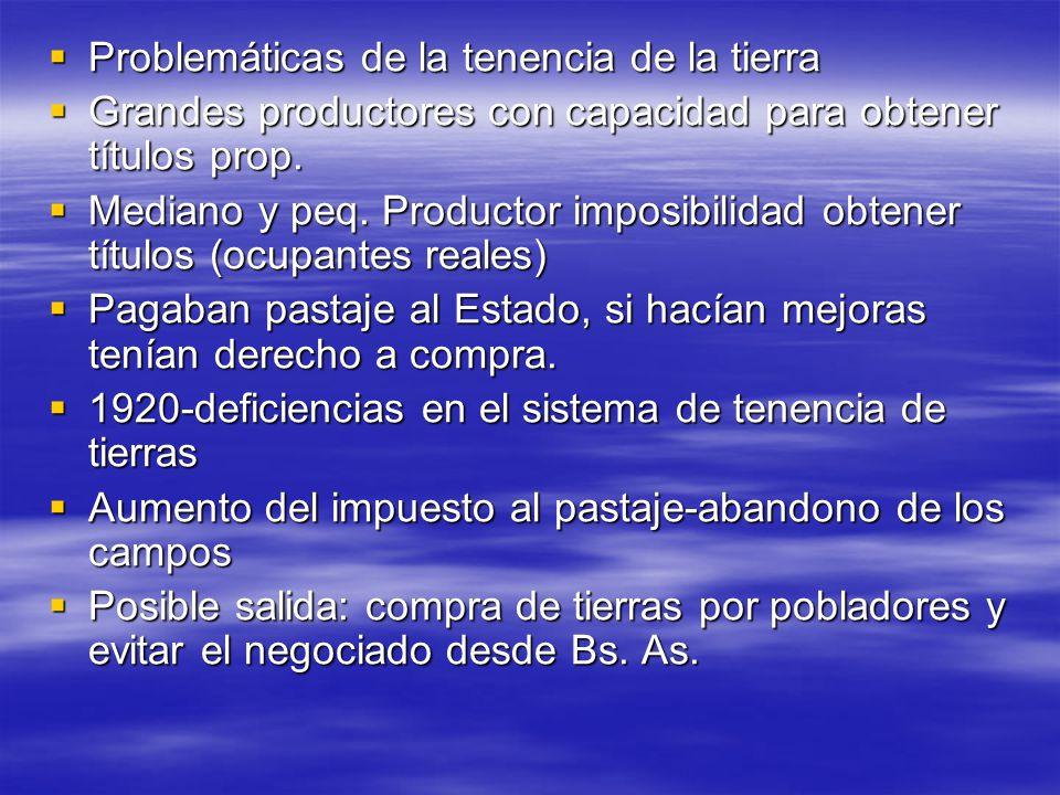 Problemáticas de la tenencia de la tierra Problemáticas de la tenencia de la tierra Grandes productores con capacidad para obtener títulos prop. Grand