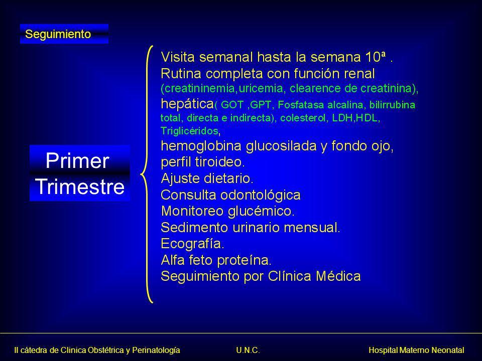 II cátedra de Clinica Obstétrica y Perinatología U.N.C. Hospital Materno Neonatal Primer Trimestre Seguimiento