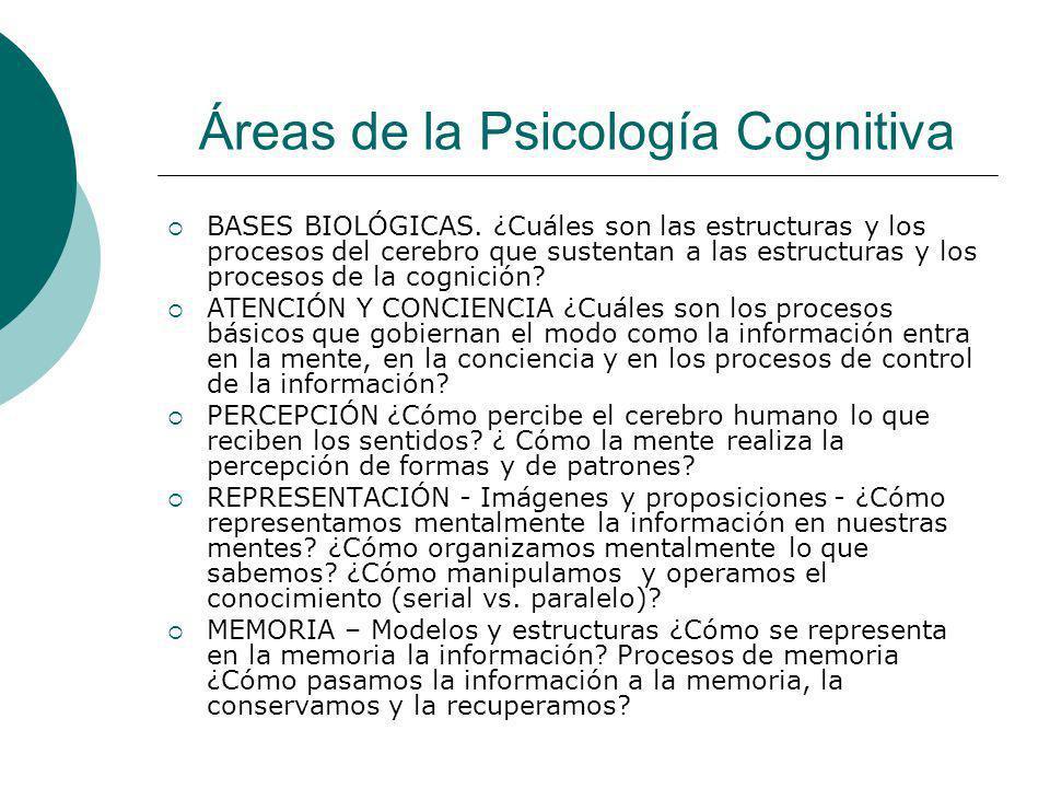Áreas de la Psicología Cognitiva BASES BIOLÓGICAS. ¿Cuáles son las estructuras y los procesos del cerebro que sustentan a las estructuras y los proces