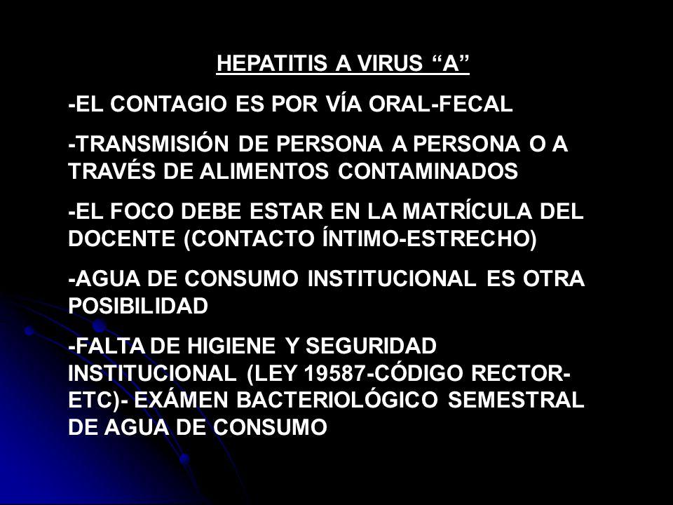 HEPATITIS A VIRUS A -EL CONTAGIO ES POR VÍA ORAL-FECAL -TRANSMISIÓN DE PERSONA A PERSONA O A TRAVÉS DE ALIMENTOS CONTAMINADOS -EL FOCO DEBE ESTAR EN L