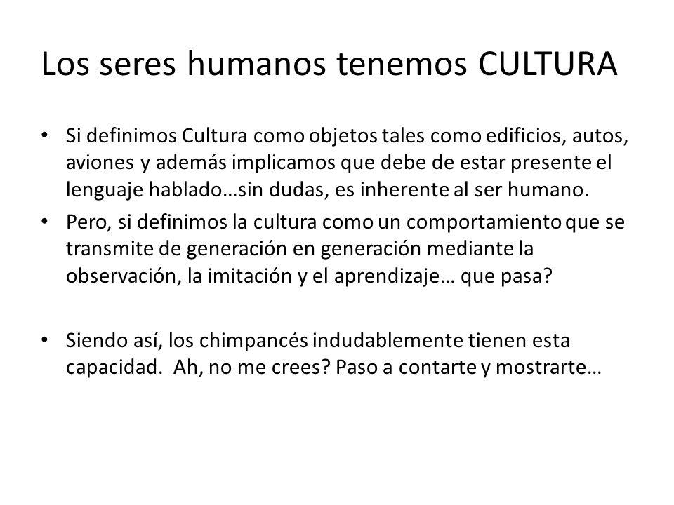 Si definimos Cultura como objetos tales como edificios, autos, aviones y además implicamos que debe de estar presente el lenguaje hablado…sin dudas, e
