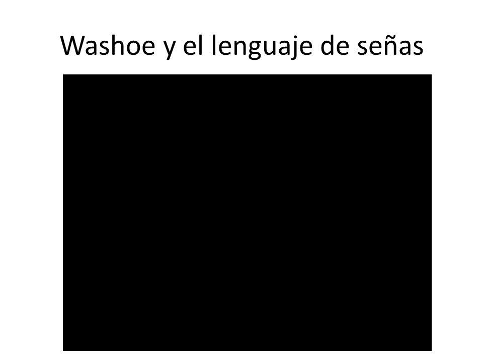 Washoe y el lenguaje de señas