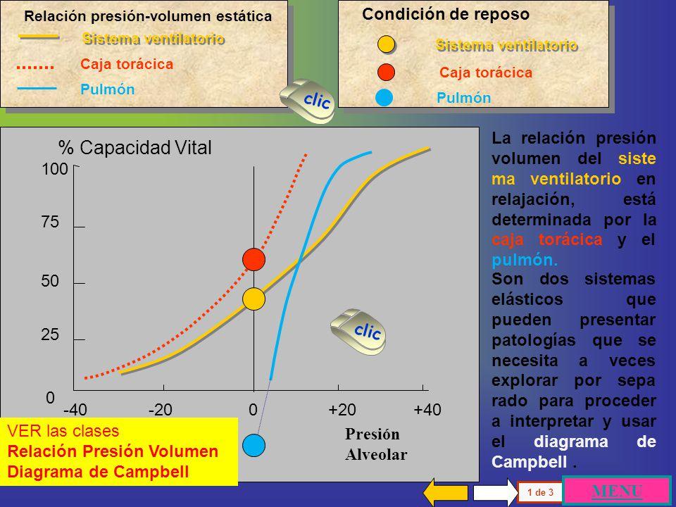 100 75 50 25 0 Presión alveolar -40 -20 0 +20 % Capacidad Vital El Volumen corriente ( Vc ) se genera en condiciones de reposo entre una inspiración y