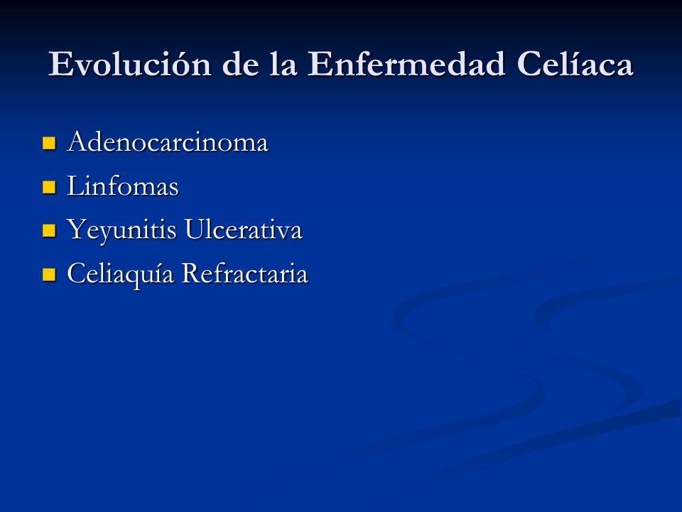 Evolución de la Enfermedad Celíaca Adenocarcinoma Adenocarcinoma Linfomas Linfomas Yeyunitis Ulcerativa Yeyunitis Ulcerativa Celiaquía Refractaria Cel