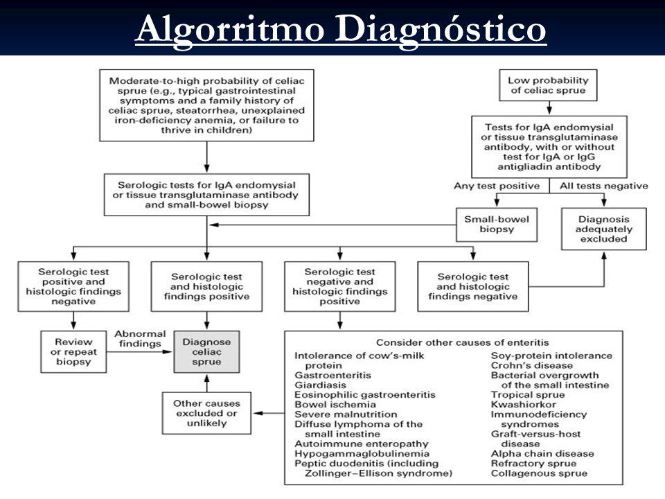 Algorritmo Diagnóstico
