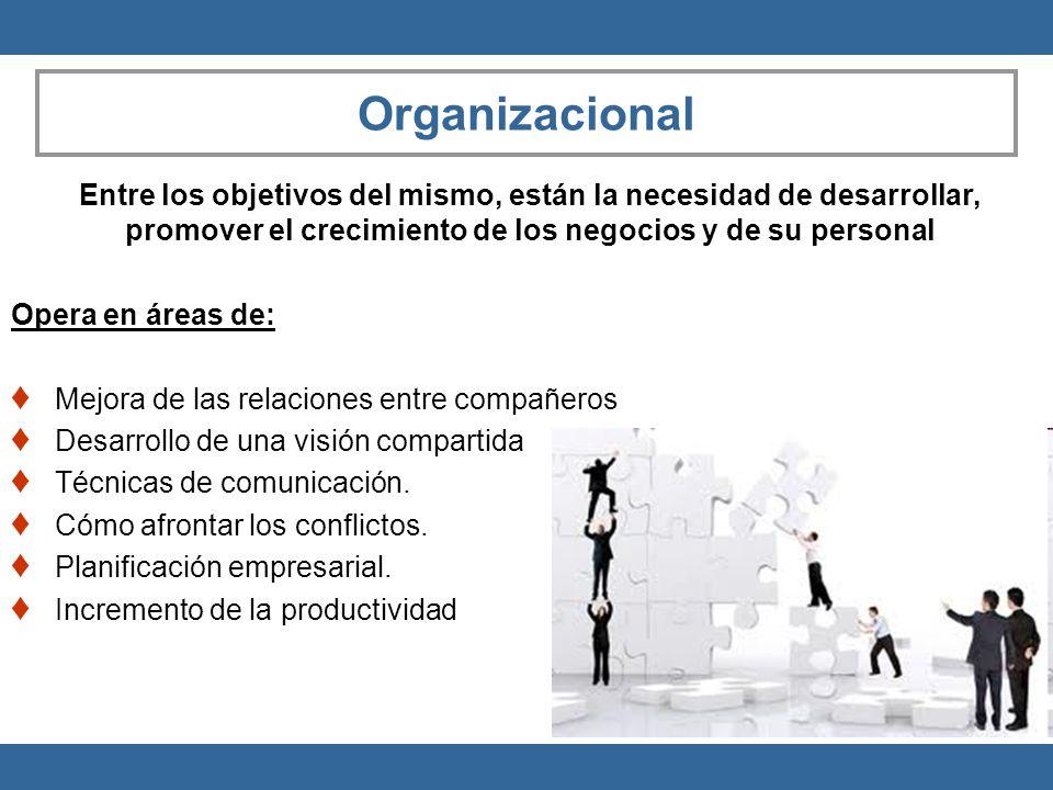 Organizacional Entre los objetivos del mismo, están la necesidad de desarrollar, promover el crecimiento de los negocios y de su personal Opera en áre