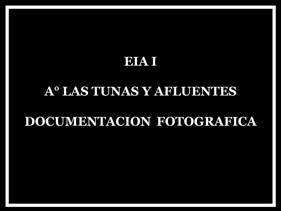 EIA I A° LAS TUNAS Y AFLUENTES DOCUMENTACION FOTOGRAFICA