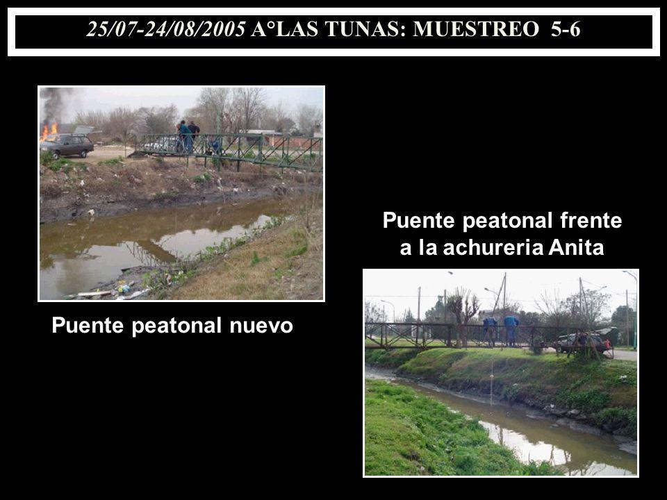 25/07-24/08/2005 A°LAS TUNAS: MUESTREO 5-6 Puente peatonal nuevo Puente peatonal frente a la achureria Anita