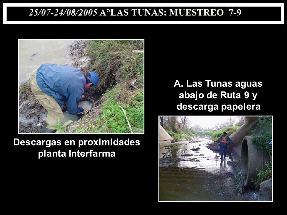25/07-24/08/2005 A°LAS TUNAS: MUESTREO 7-9 Descargas en proximidades planta Interfarma A. Las Tunas aguas abajo de Ruta 9 y descarga papelera