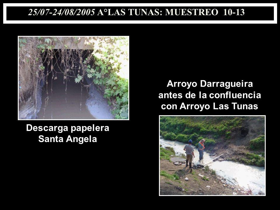 25/07-24/08/2005 A°LAS TUNAS: MUESTREO 10-13 Descarga papelera Santa Angela Arroyo Darragueira antes de la confluencia con Arroyo Las Tunas