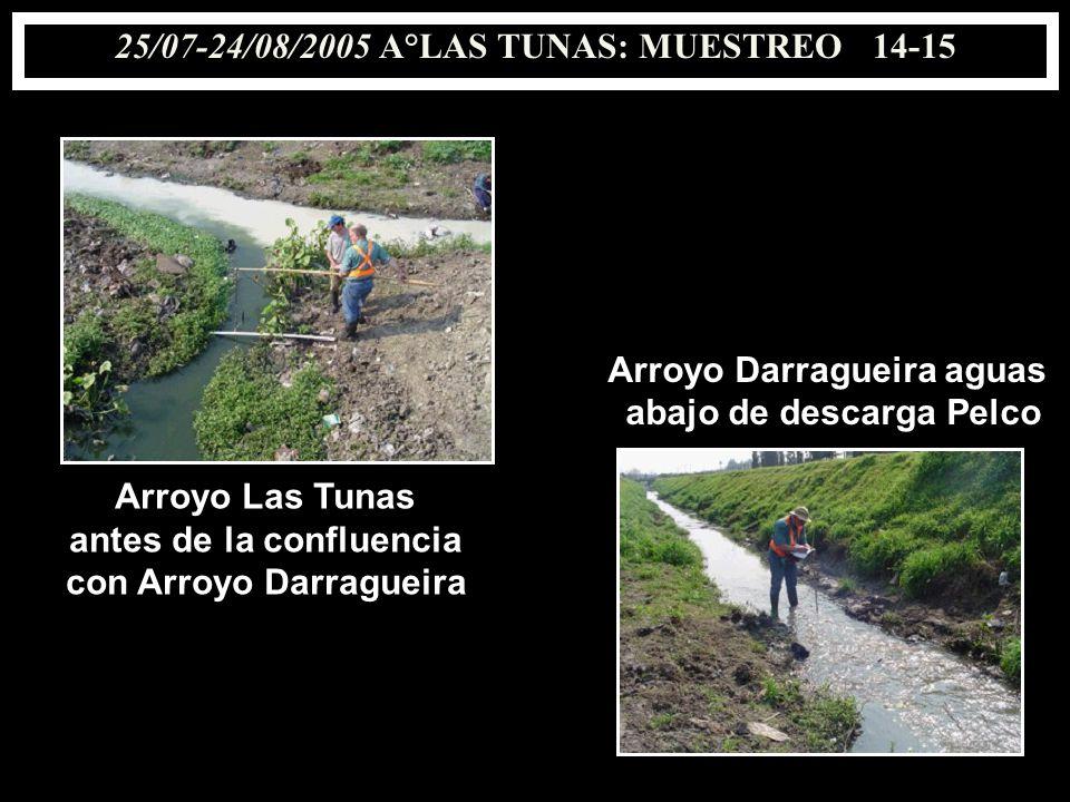 25/07-24/08/2005 A°LAS TUNAS: MUESTREO 14-15 Arroyo Las Tunas antes de la confluencia con Arroyo Darragueira Arroyo Darragueira aguas abajo de descarg