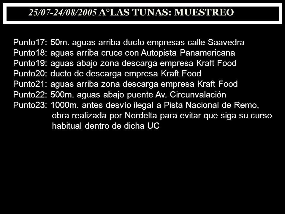 25/07-24/08/2005 A°LAS TUNAS: MUESTREO Punto17: 50m. aguas arriba ducto empresas calle Saavedra Punto18: aguas arriba cruce con Autopista Panamericana