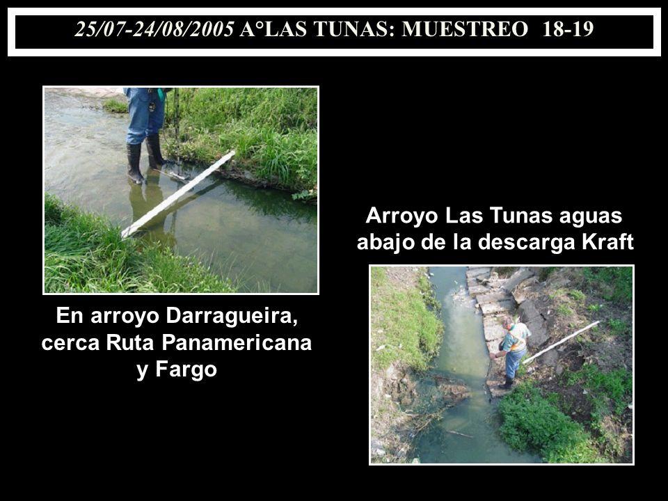 25/07-24/08/2005 A°LAS TUNAS: MUESTREO18-19 En arroyo Darragueira, cerca Ruta Panamericana y Fargo Arroyo Las Tunas aguas abajo de la descarga Kraft