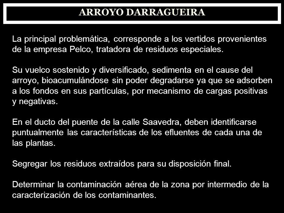 ARROYO DARRAGUEIRA La principal problemática, corresponde a los vertidos provenientes de la empresa Pelco, tratadora de residuos especiales. Su vuelco