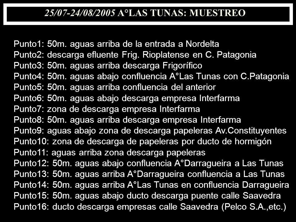 25/07-24/08/2005 A°LAS TUNAS: MUESTREO Punto1: 50m. aguas arriba de la entrada a Nordelta Punto2: descarga efluente Frig. Rioplatense en C. Patagonia