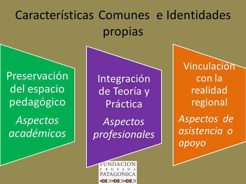 Proyecto Curricular Institucional Construcción participativa Propuestas para la Acción Redefinición reflexiva síntesis