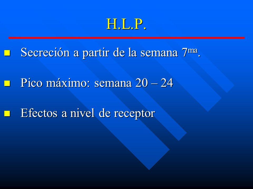 H.L.P.Secreción a partir de la semana 7 ma. Secreción a partir de la semana 7 ma.