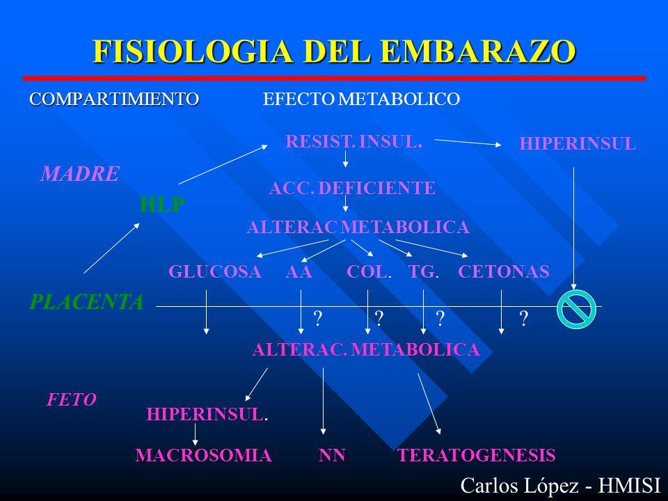 FISIOLOGIA DEL EMBARAZO COMPARTIMIENTOEFECTO METABOLICO MADRE PLACENTA FETO RESIST.
