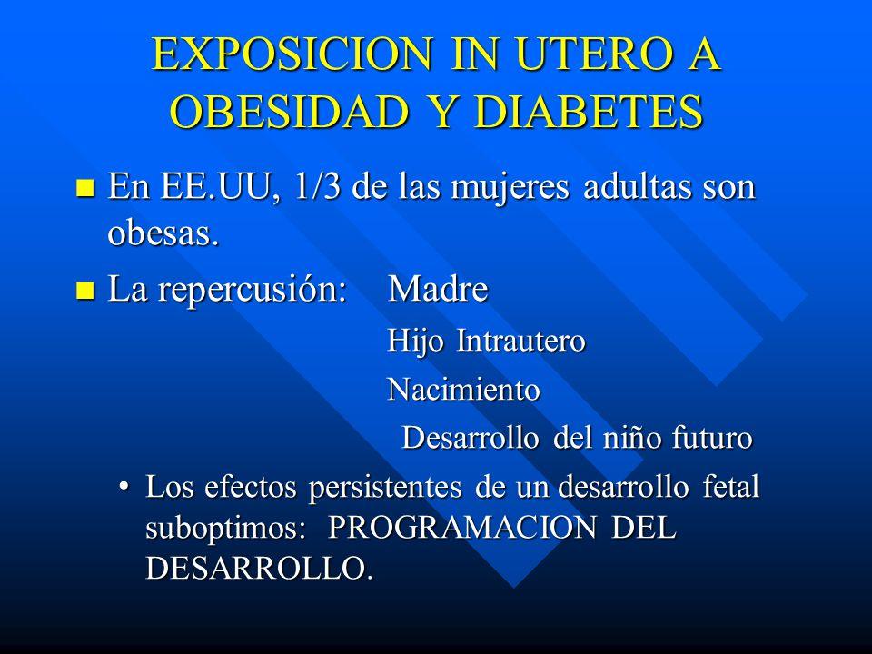 EXPOSICION IN UTERO A OBESIDAD Y DIABETES En EE.UU, 1/3 de las mujeres adultas son obesas.