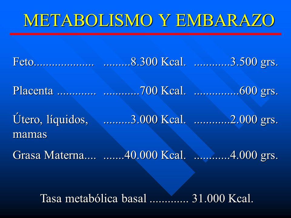METABOLISMO Y EMBARAZO Feto.............................8.300 Kcal.............3.500 grs.