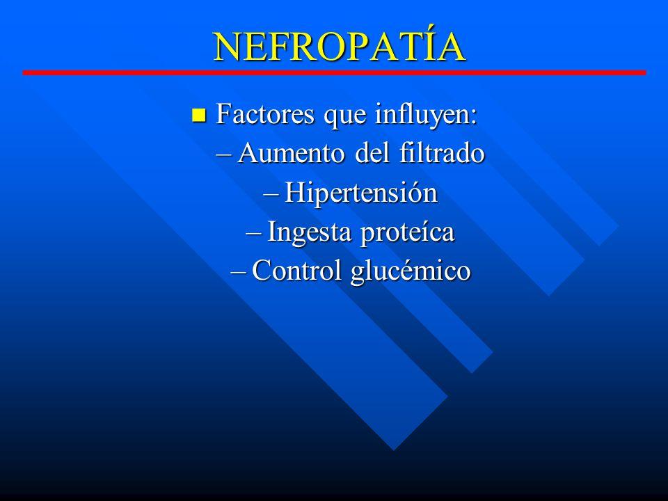 NEFROPATÍA Factores que influyen: Factores que influyen: –Aumento del filtrado –Hipertensión –Ingesta proteíca –Control glucémico