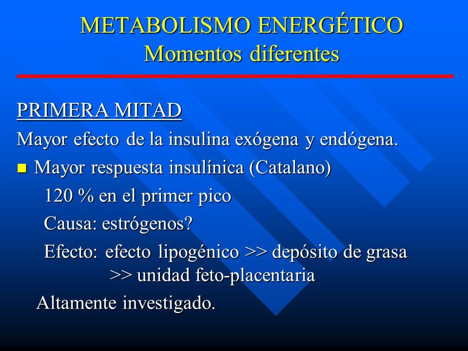 METABOLISMO ENERGÉTICO Momentos diferentes PRIMERA MITAD Mayor efecto de la insulina exógena y endógena.