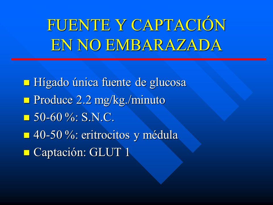 FUENTE Y CAPTACIÓN EN NO EMBARAZADA Hígado única fuente de glucosa Hígado única fuente de glucosa Produce 2.2 mg/kg./minuto Produce 2.2 mg/kg./minuto 50-60 %: S.N.C.