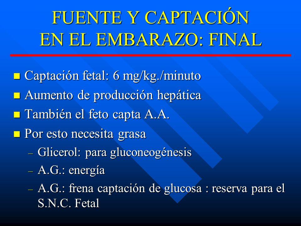 FUENTE Y CAPTACIÓN EN EL EMBARAZO: FINAL Captación fetal: 6 mg/kg./minuto Captación fetal: 6 mg/kg./minuto Aumento de producción hepática Aumento de producción hepática También el feto capta A.A.