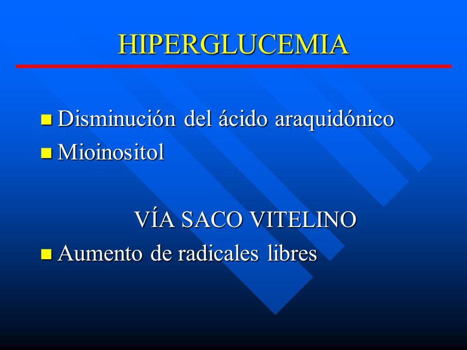 HIPERGLUCEMIA Disminución del ácido araquidónico Disminución del ácido araquidónico Mioinositol Mioinositol VÍA SACO VITELINO Aumento de radicales libres Aumento de radicales libres