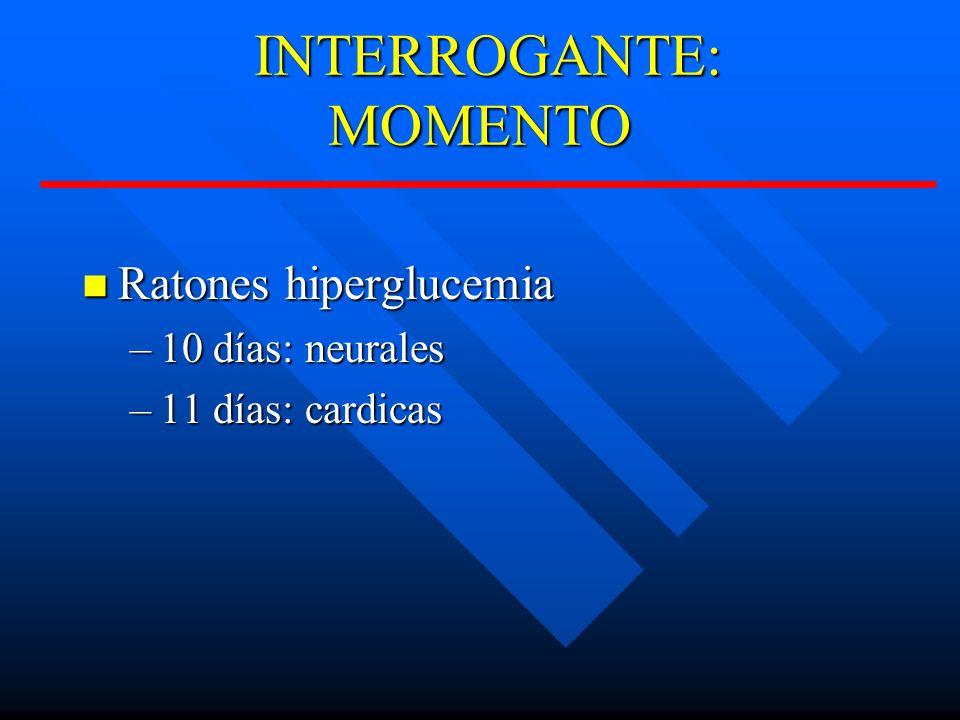 INTERROGANTE: MOMENTO INTERROGANTE: MOMENTO Ratones hiperglucemia Ratones hiperglucemia –10 días: neurales –11 días: cardicas