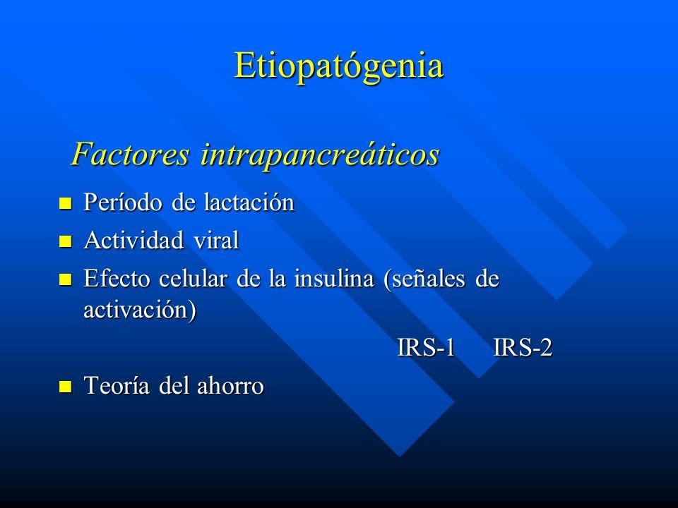 Factores intrapancreáticos Período de lactación Período de lactación Actividad viral Actividad viral Efecto celular de la insulina (señales de activación) Efecto celular de la insulina (señales de activación) IRS-1 IRS-2 Teoría del ahorro Teoría del ahorro Etiopatógenia