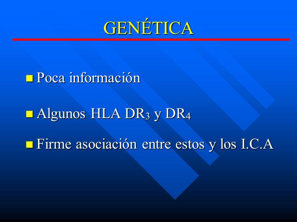 GENÉTICA Poca información Poca información Algunos HLA DR 3 y DR 4 Algunos HLA DR 3 y DR 4 Firme asociación entre estos y los I.C.A Firme asociación entre estos y los I.C.A