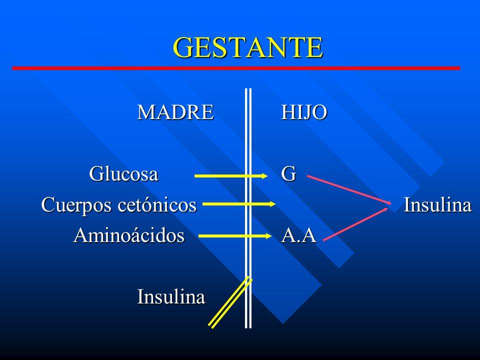 GESTANTE MADREHIJO GlucosaG Cuerpos cetónicos Insulina AminoácidosA.A AminoácidosA.AInsulina