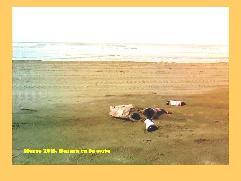 Marzo 2011. Basura en la costa