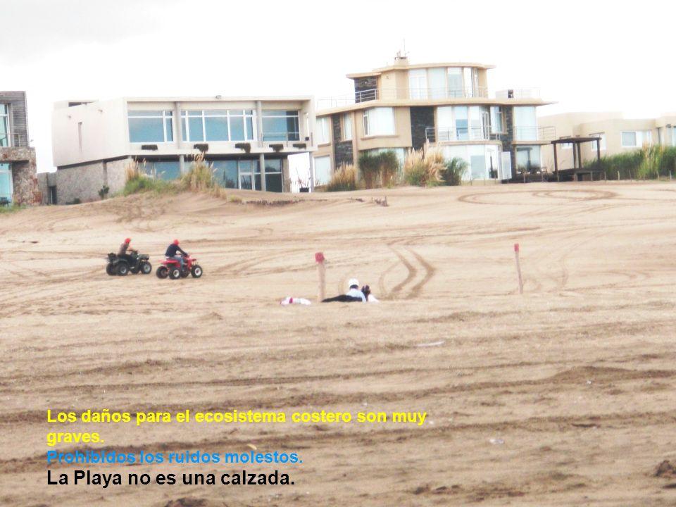 Los daños para el ecosistema costero son muy graves.