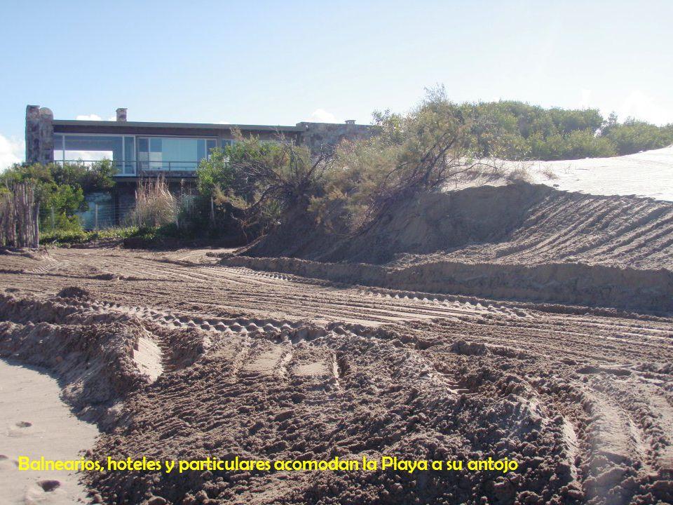 Balnearios, hoteles y particulares acomodan la Playa a su antojo