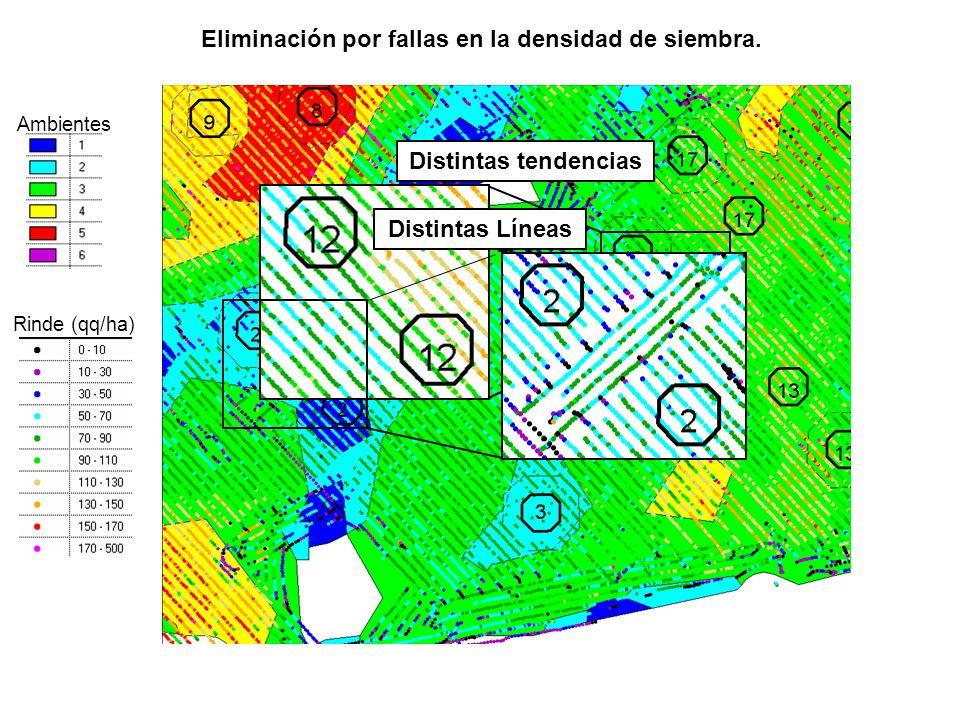 Eliminación por fallas en la densidad de siembra.