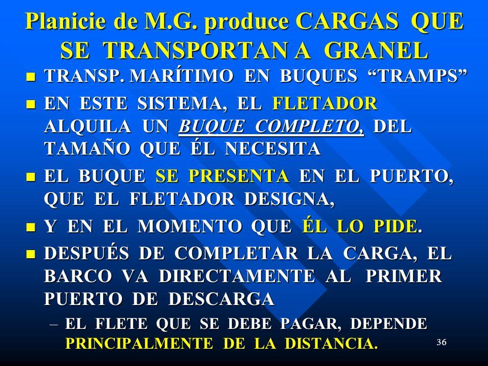 36 Planicie de M.G. produce CARGAS QUE SE TRANSPORTAN A GRANEL TRANSP. MARÍTIMO EN BUQUES TRAMPS TRANSP. MARÍTIMO EN BUQUES TRAMPS EN ESTE SISTEMA, EL